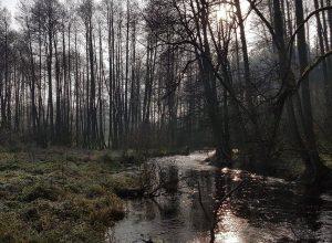 zdjęcie rzeki - agroturystyka Piła